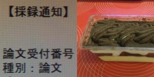 Sairokucake300x150